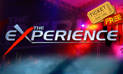 The Experience 2013