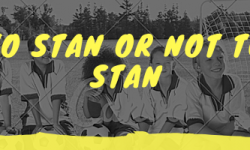 What does stan mean?